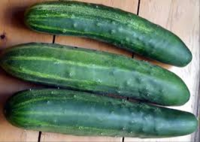 You're a big cucumber